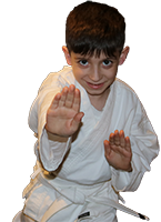Boy in fighting posture