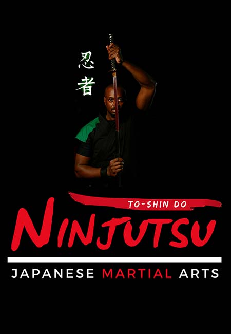 Adult martial arts page header
